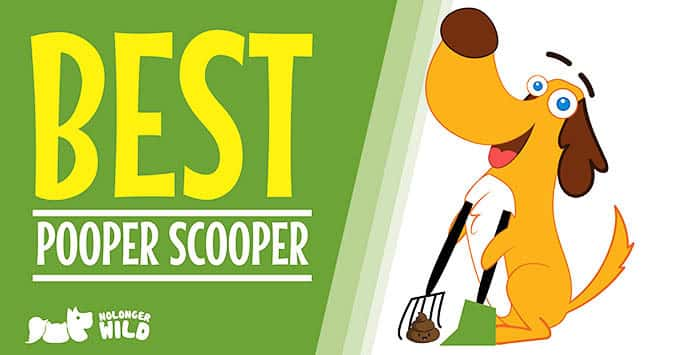 Best-pooper-scooper-1
