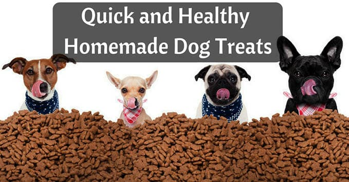 Homemade-dog-treats-11