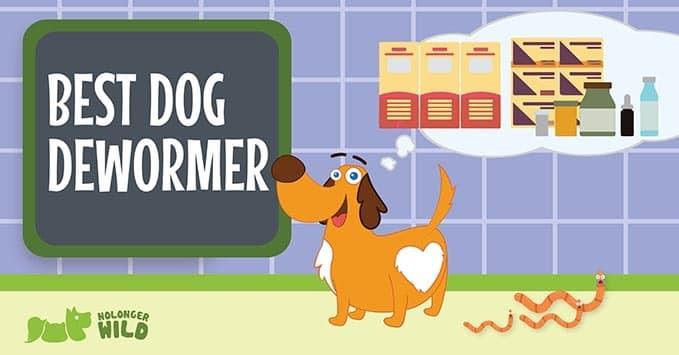best-dog-dewormer-2