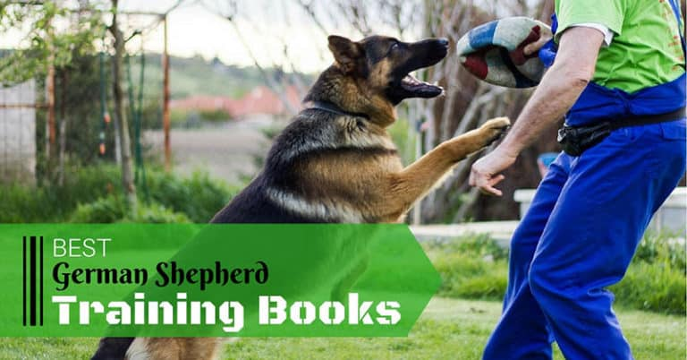 best-german-shepherd-traning-books-1