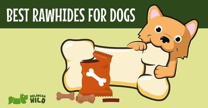 best-rawhides-for-dog-2