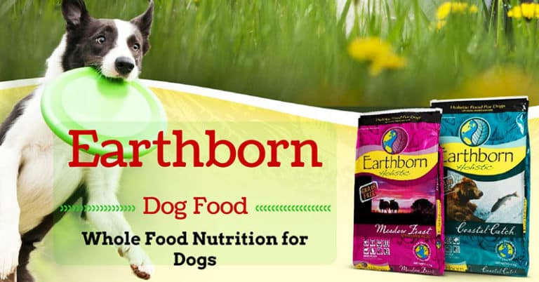 earthborn-dog-food-review-1