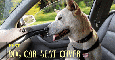 best-dog-car-seat-cover-2