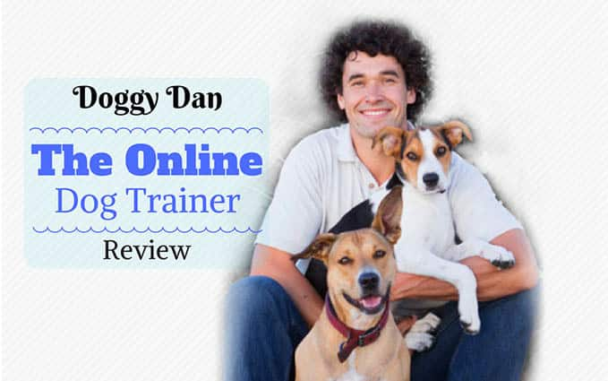 Doggy-Dan-the-online-dog-trainer-review