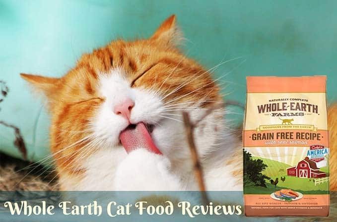 Whole-Earth-Cat-Food-Reviews-1