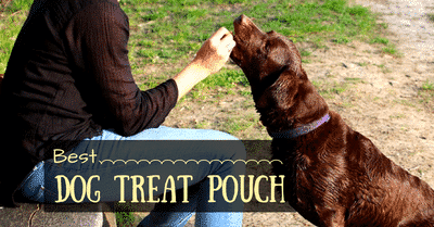 best-dog-treat-pouch-2