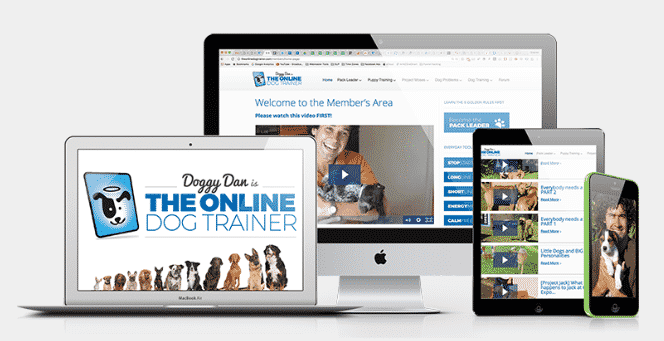 Doggy-Dan-the-online-dog-trainer-review-2.jpg