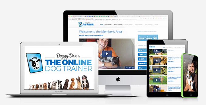 Doggy-Dan-the-online-dog-trainer-review-9