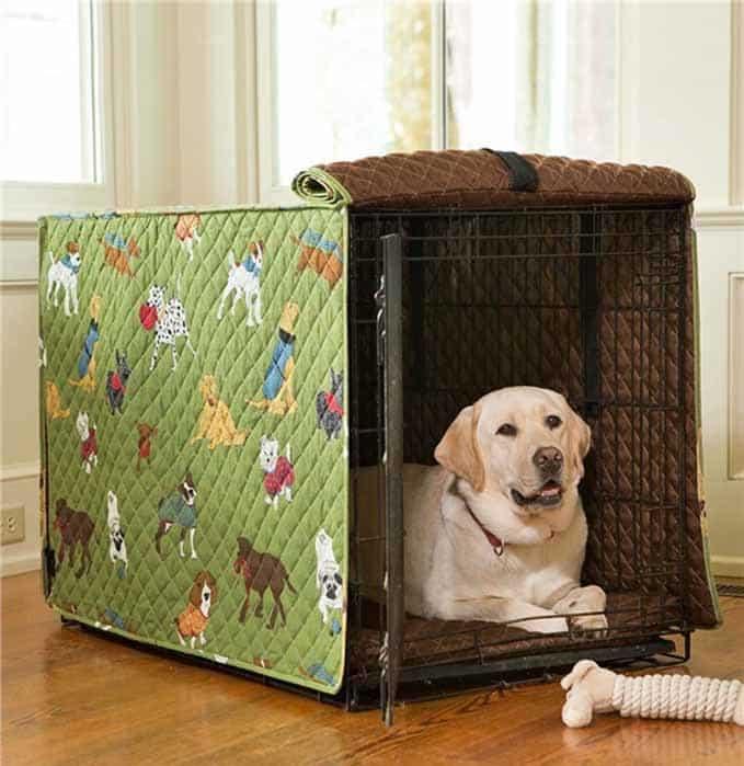 dog-accessories-5
