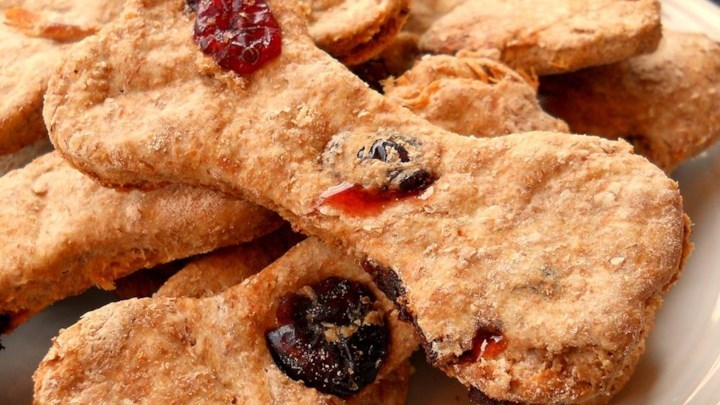 recipes-homemade-cranberies-dog-treat-1