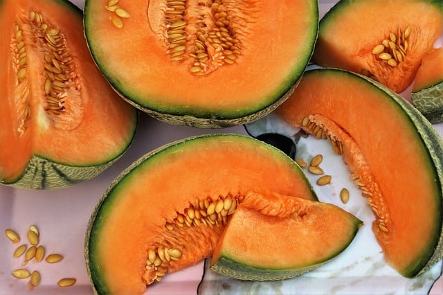 is-​cantaloupes-good-for-dogs